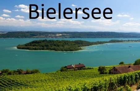 Foto vom Bielersee