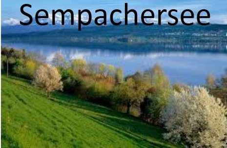 Foto vom Sempachersee