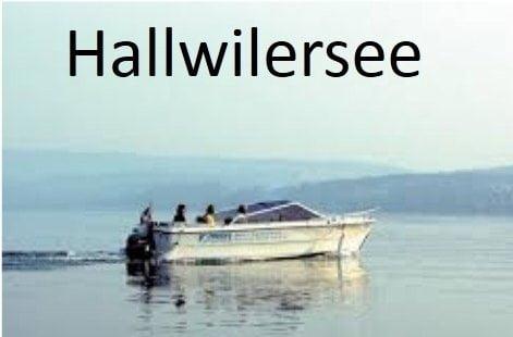 Foto vom Hallwilersee